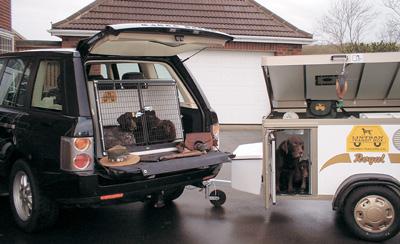 Lintran Dog Trailer For Sale