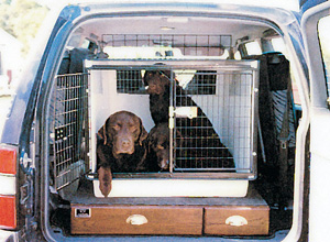 Dog Kennels Dog Cages Dog Beds Pet Carriers Dog Boxes